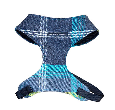 Medium Azure Check Harness
