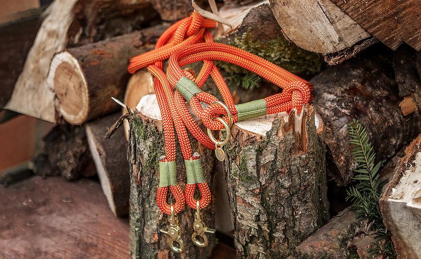 Rope Dog Collar & Lead.jpg