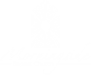 logo-white PNG.png