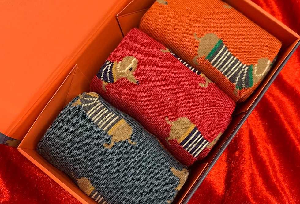 Men's Dog Bamboo Sock Set | Womens Accessories | Shop Moulina Online or at our Boutique! | View 1