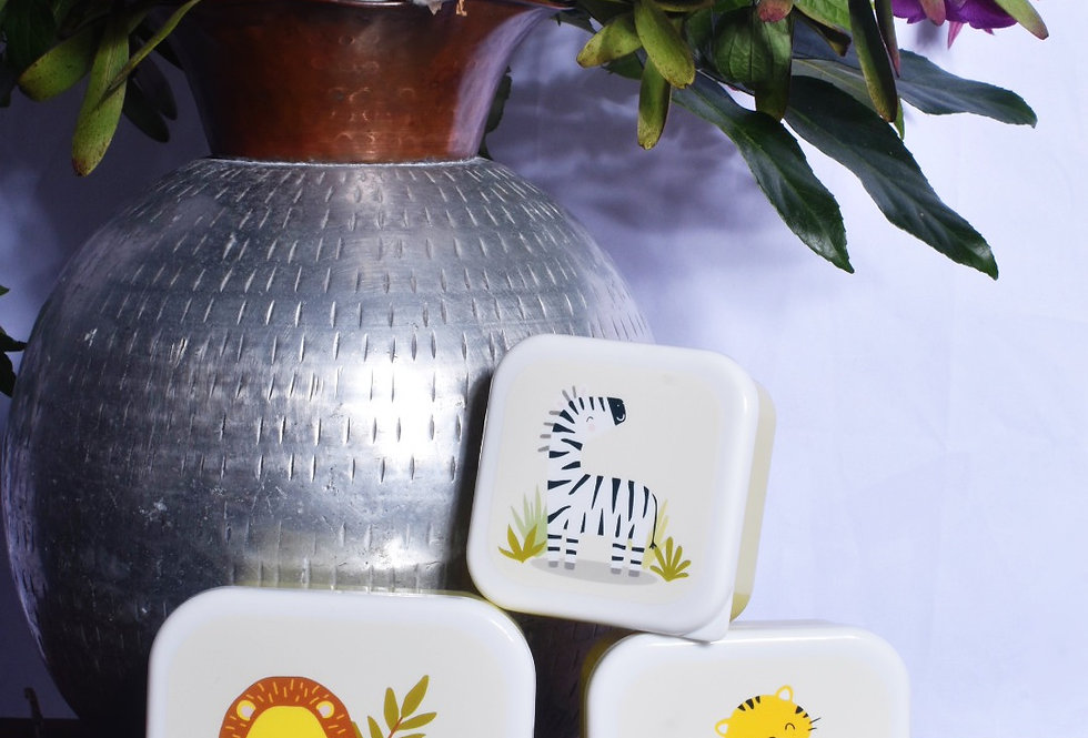 Safari Lunch Boxes (set of three)   Gifts   Ladies Boutique & Giftware   Moulina   View 1