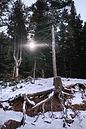 Wasatch Lake - Light 002.jpg