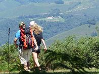 hikers-2632522_1920.jpg