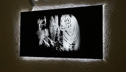 LED Laser Glasbild