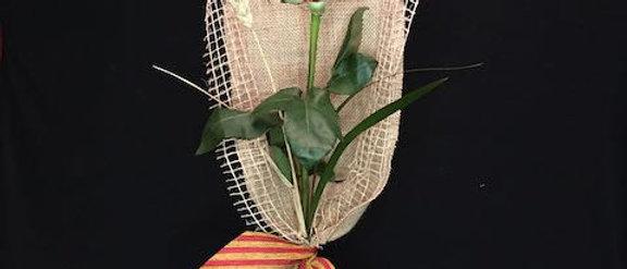 Rosa Llegenda