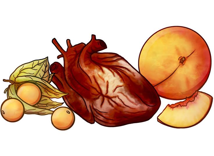 Herz und Früchte