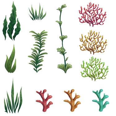 UnderwaterPlants.jpg
