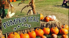Ranch cities fall events