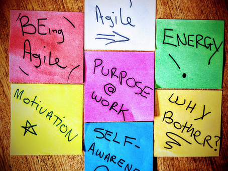 How I found my purpose as an agilist (and how you can find yours)