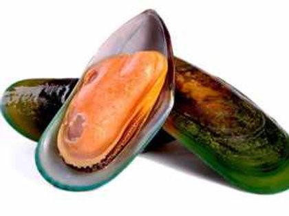 NZ Mussels Half Shell