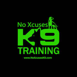 NoX Logo - Trianing FBprofilepic