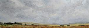 A slice of Dartmoor
