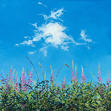 Blue sky, cloud and wild flowers picture Katy Stoneman