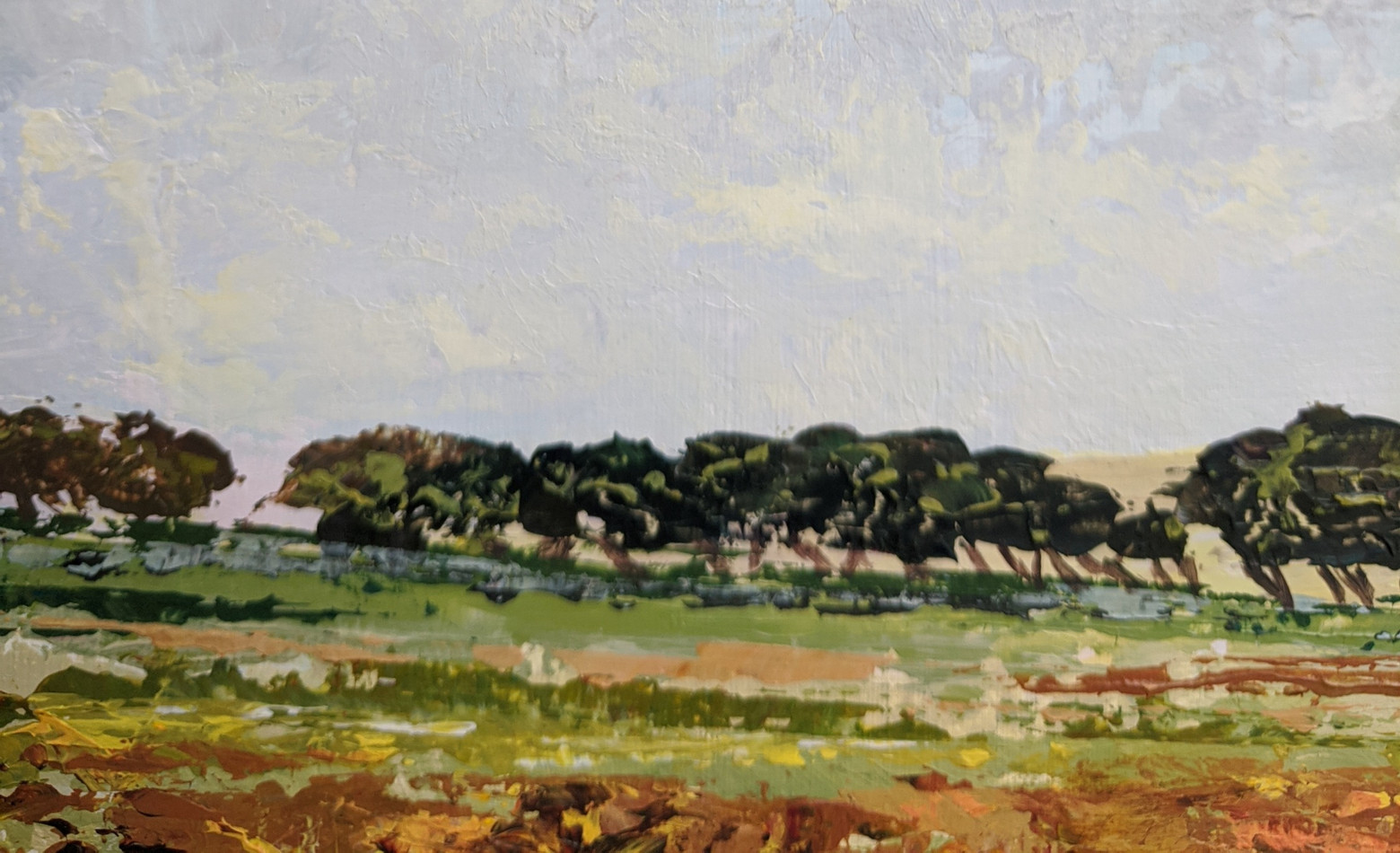 A Slice of Dartmoor - detail