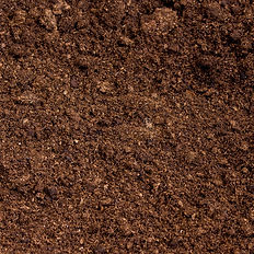 peat-moss-soil-close-up-41519544.jpg