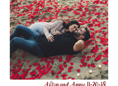 Engagement Season! {Abtin + Annie}