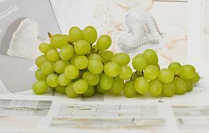 gyógynövény szőlő