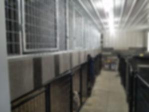 kennel inside.jpg
