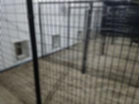 outdoordoggiedoor.jpg
