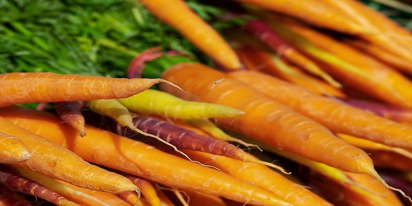 carrots-3440368_1280-1.jpg