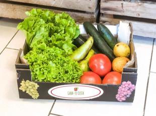"""Gaba-te Cesta"" adapta negócio para combater desperdício alimentar"