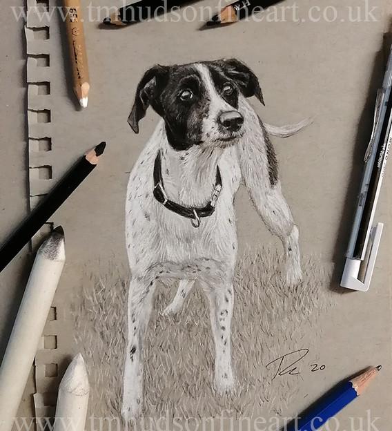 sketch110.jpg