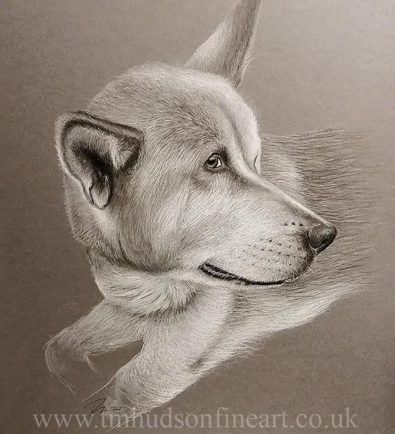 sketch113.jpg