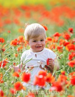 poppies19small.jpg