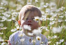 poppies110small.jpg