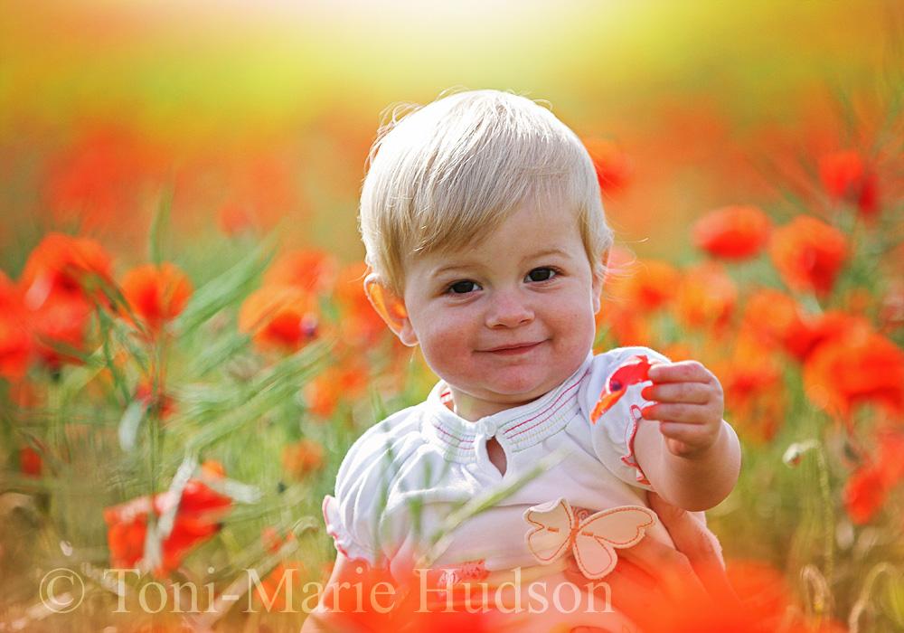 poppies23small.jpg