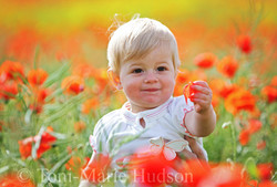 poppies22small.jpg