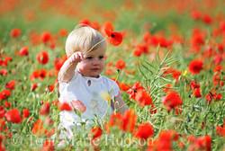 poppies41small.jpg