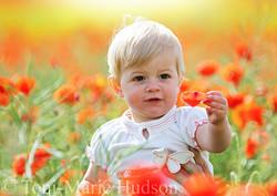 poppies21small.jpg