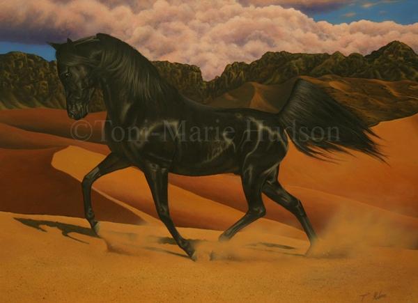 horse12.jpg