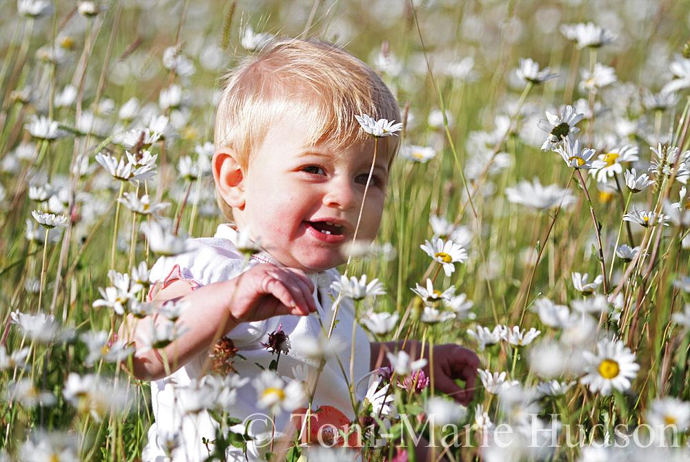 poppies106small.jpg