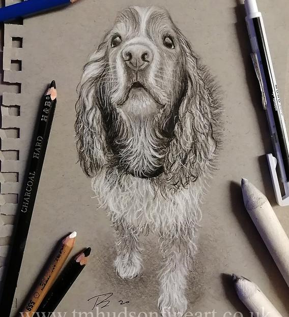 sketch107.jpg