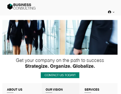 Example Website showing professional people
