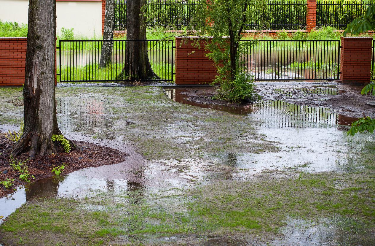 Spring-flood-187115781_1266x830.jpeg