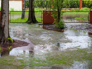 Drainage Issues: Take Care of Them Now