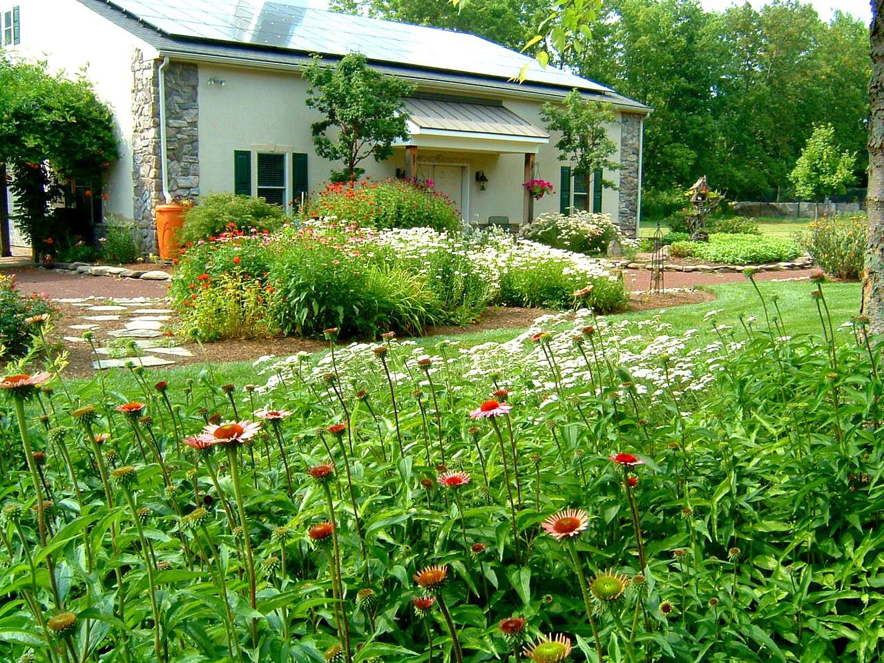 Garden and Walkways