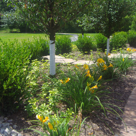 Residential Patio - Tree & Flower Bed