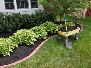 Eco-Friendly Mulch