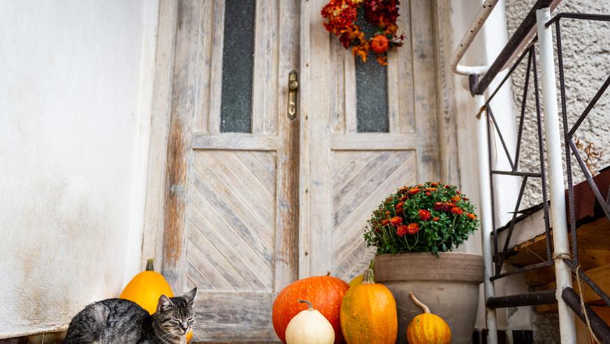 Halloween-decorated-front-door-with-vari