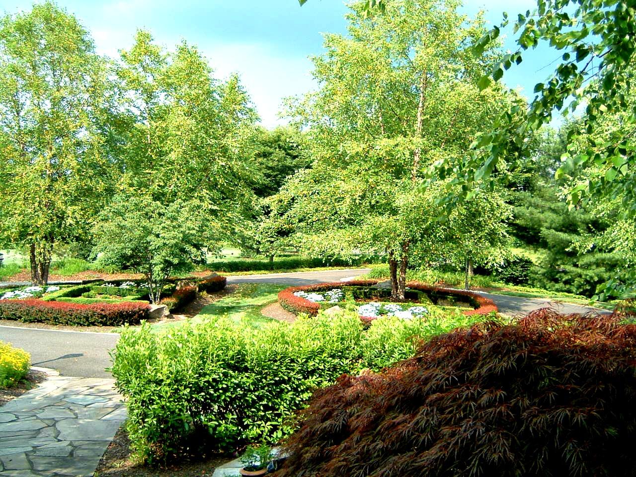Nurney Landscape