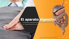 El aparato digestivo.jpg