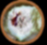 Icono_lección_.png