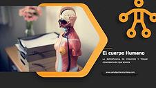 El cuerpo humano.jpg