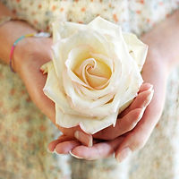 Rose-Hand-Gold-Square-Muted.jpg