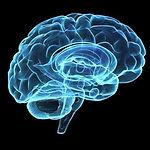 Meditation Effects on Brain Image