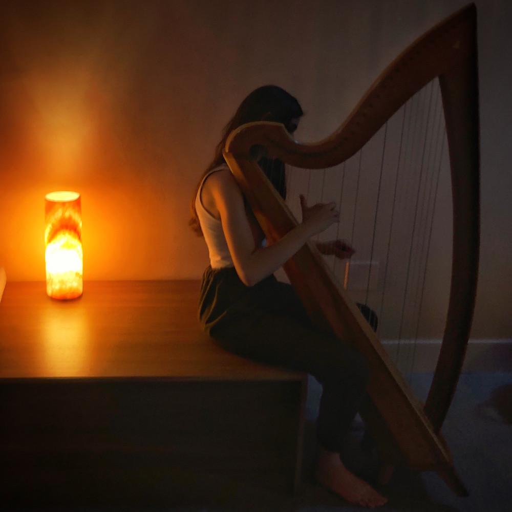 Live Harpist Tal Vaknine
